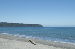 Bruce Bay1