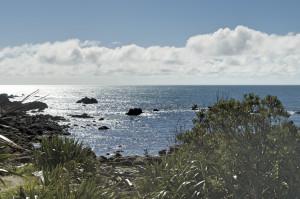 Bucht Jackson Bay