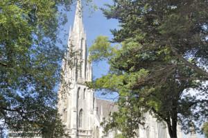 Church Dunedin4
