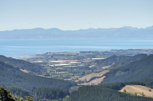 Hawkes Lookout2