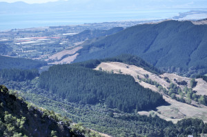 Hawkes Lookout4