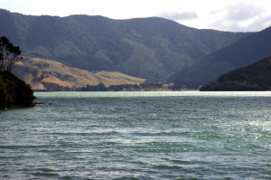 Marlborough Sound4
