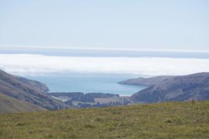 Okains Bay von oben