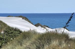 W_Beach10