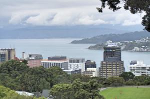 Wellington von oben4