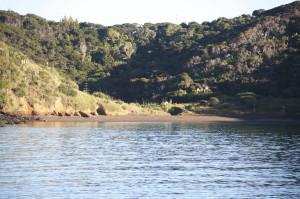 Bucht Tutukaka