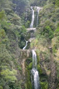 Katikati_Falls_oben2