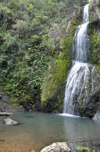 Katikati_Falls_unten