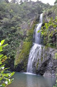 Katikati_Falls_unten2