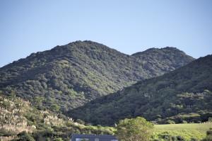 Landscape Ahipara