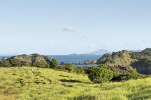 Landscape Tutukaka