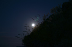Moon Ahipara