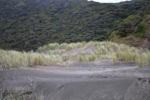 Sand mit Hintergrund