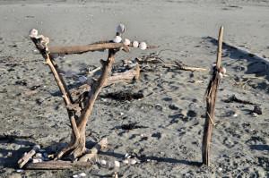 Strandkunst ohope