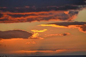 Sunrise X Tokumaru Bay
