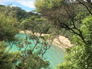 Whale Bay2_Fotor