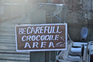 Krokodilschild