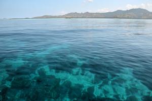 Wasser Komodo