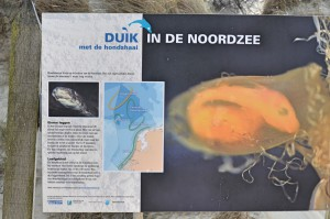 Schild Tauchen Nordsee