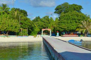Einheimischen Insel 1