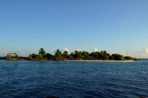 Insel 1