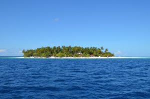 Insel 2